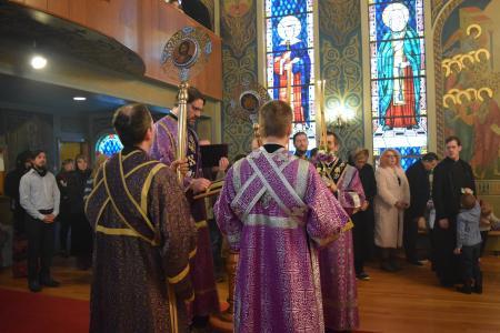 2017-0312-ordination3