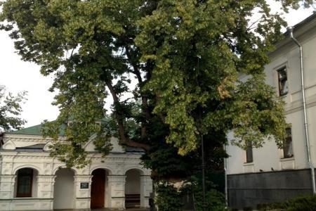 2013-0727-kyiv24