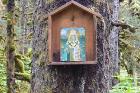 2013-0808-spruce-island11